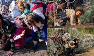 "A young migrant's hair becomes stuck while crawling under a barbed fence with her family at the Hungarian-Serbian border near Roszke, on August 27, 2015. As Europe struggles with its worst migrant crisis since World War II, Hungary has become, like Italy and Greece, a ""frontline"" state. So far this year, police say around 141,500 migrants have been intercepted crossing into Hungary, mostly from neighbouring Serbia. AFP PHOTO / ATTILA KISBENEDEKATTILA KISBENEDEK/AFP/Getty Images"